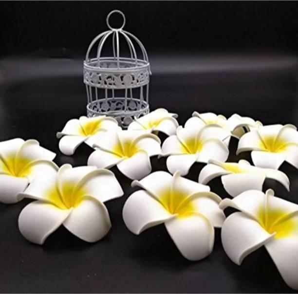 Satyam Kraft Satyam Kraft Big Foam Hawaii Beach Flowers (Pack of 24) For Wedding Box, Hat Decoration ,DIY Artificial Garland Supplies White Apple Blossom Artificial Flower
