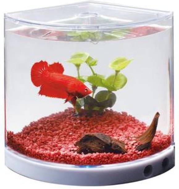 Dophin T201 Corner Pentagon Aquarium Tank