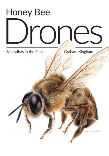 Honey Bee Drones