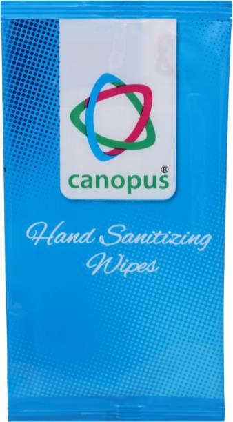 Canopus Hand Sanitizing Wipes (1X50)