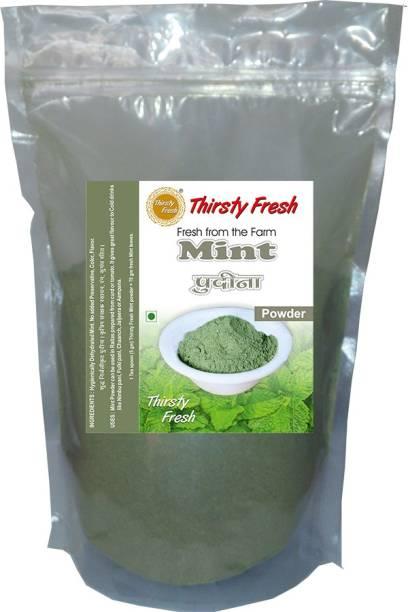 Thirsty Fresh Pudina   Mint Powder - Dehydrated