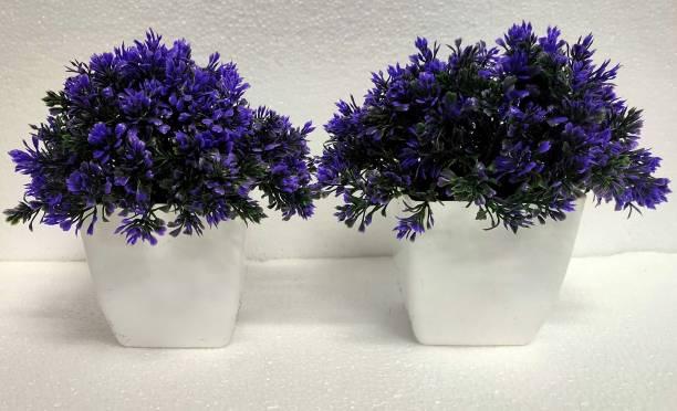 Florakite Wild Artificial Plant  with Pot