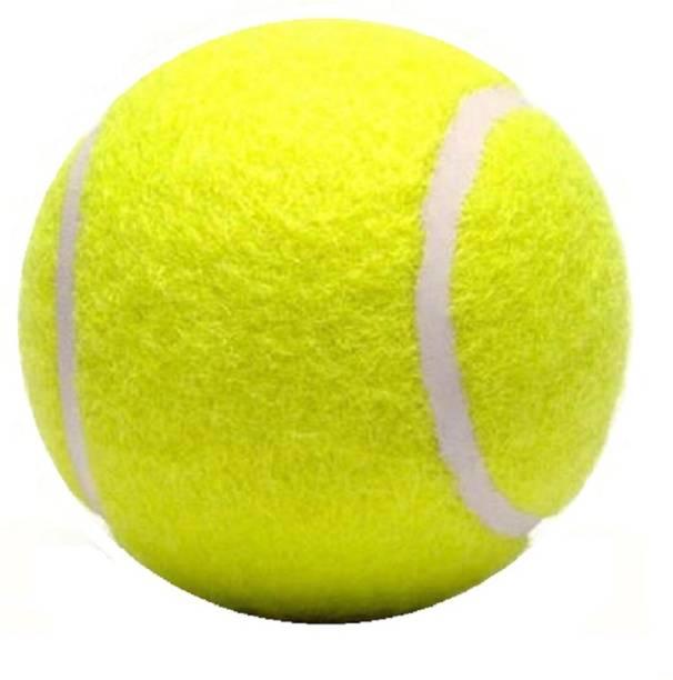 Sun Fly Cricket Tennis ball Tennis Pack of 1 Tennis Ball ( Yellow ) Cricket Tennis Ball