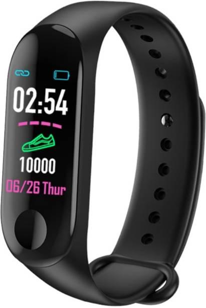 Welltech Mileage Blood Pressure Heartrate Monitor