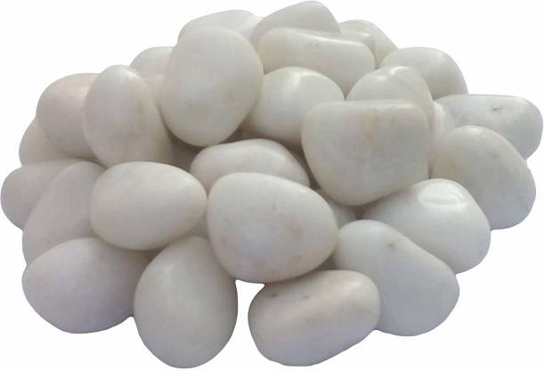 Foodies Puppies 3 kg White Stone for Home, Garden and Aquarium Marble Unplanted Substrate