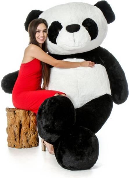 Bear Bucket 3 Feet Very Cute Long Soft Hugable Teddy Bear  - 90 cm