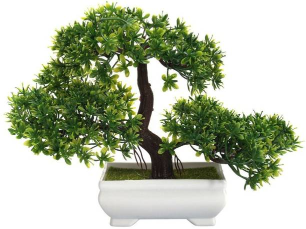 Florakite Bonsai Wild Artificial Plant  with Pot