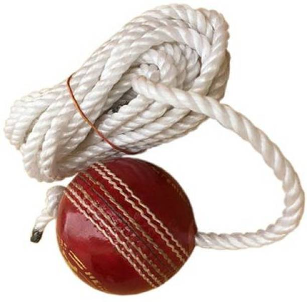 TASK Practice Leather Hanging Cricket Training Ball