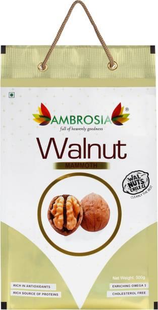 AMBROSIA Chile Walnut Inshell Mammoth ( 36+mm) 500g Walnuts