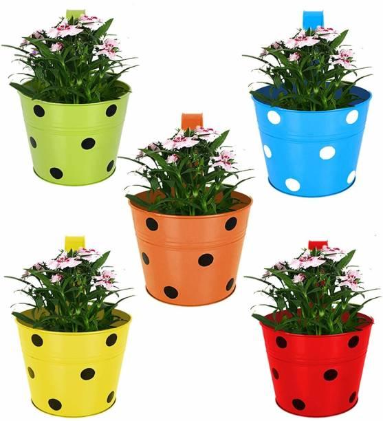Artesia Single Pot Railing Planter (Multicolour, Pack of 5) Plant Container Set