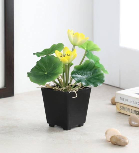 FOURWALLS Artificial Real Touch Lotus Flowers in a Plastic Pot for Tabletop Décor (18 cm, Yellow) Bonsai Artificial Plant