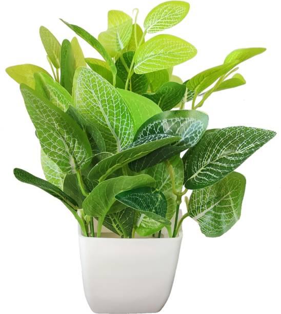 BK Mart Natural Looking Money Plant Bonsai Artificial Plant  with Pot
