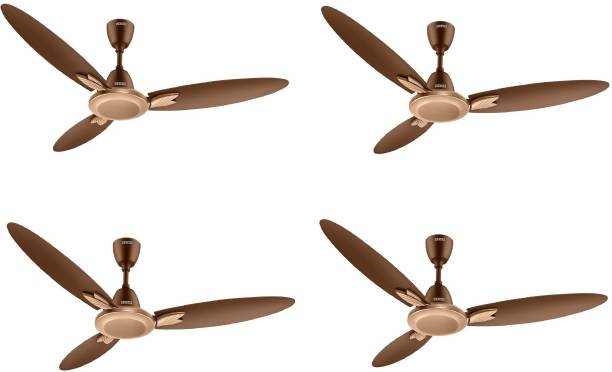 USHA CF1250MM bloom magnolia spaerkl GOLD&BRGD Pack of 4 1258 mm 3 Blade Ceiling Fan