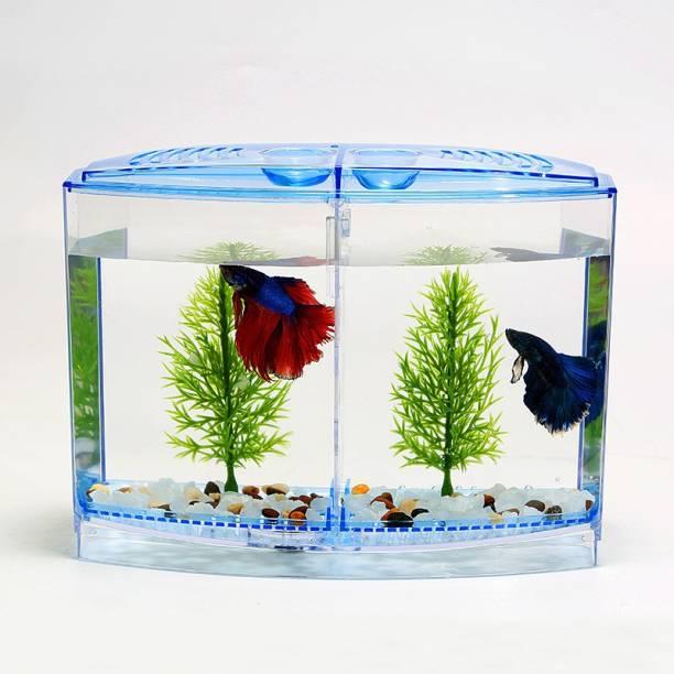 OrchidWala Fighting Fish Isolated Double Box FIsh Tank / Aquarium Concave View Aquarium Tank