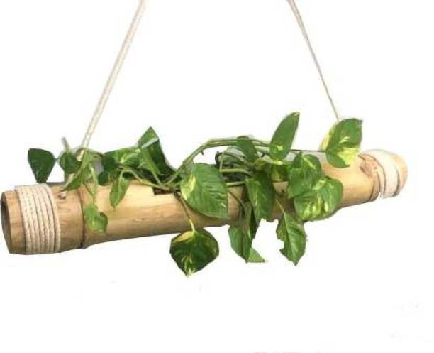 WOODYKRAFT Hanging Bamboo Pot with Adjustable Rope – Garden Bamboo Stand – Bamboo hanging planter (Pack of 1) Plant Container Set