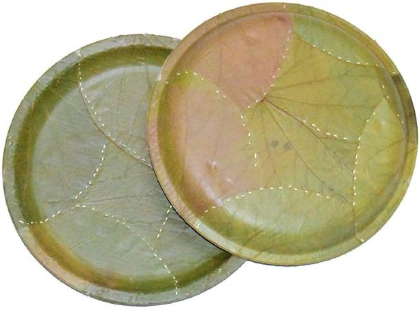 SWHF Biodegradable Round Eco friendly Plates 8 Inches Dinner Plate