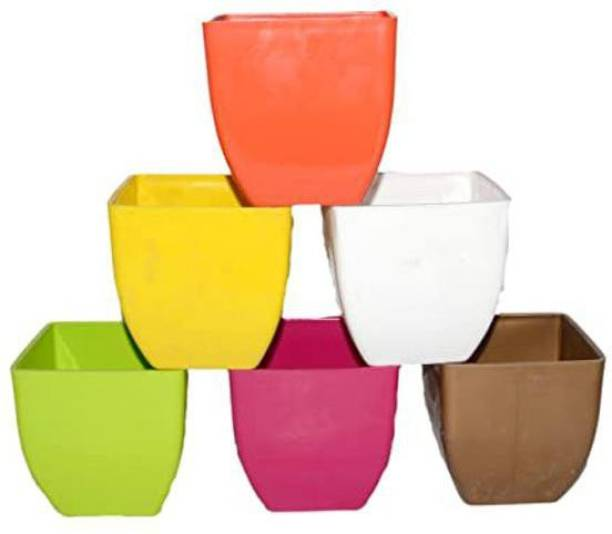 Oshi Greens Pearl-Blossom-5inches-mix-color-table-top-pot Plant Container Set