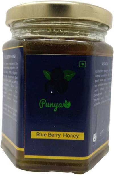Punya Naturals Orgainc Blue Berry Honey