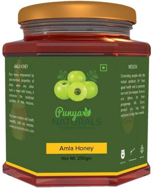 Punya Naturals Orgainc Amla Honey