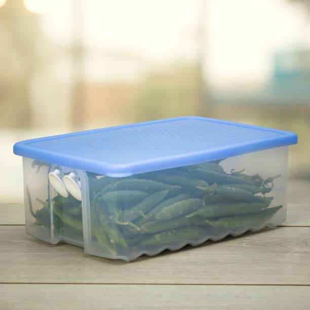 TUPPERWARE Fridge Smart Medium 1pc  - 1.6 L Plastic Fridge Container