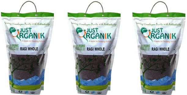 Just Organik Ragi Whole 3 Kg (3 x 1 Kg), 100% Organic Combo