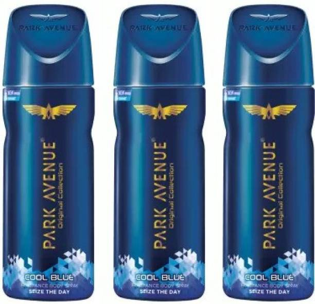 PARK AVENUE Cool Blue Seize the Day DEO Body Spray  -  For Men