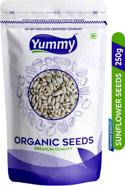 Yummy Sunflower Seeds