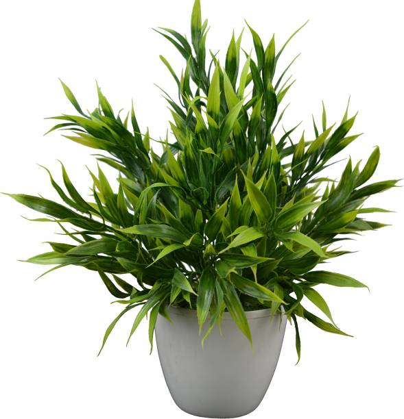 fancymart Bamboo Leaves Artificial Plant  with Pot