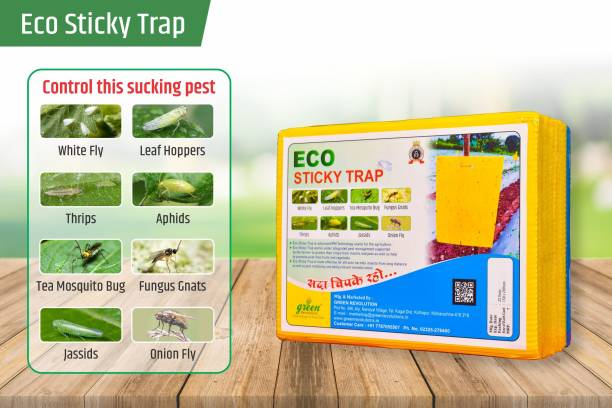 Green Revolution ECO Sticky Trap for Garden & Farm, Glue Trap, Yellow sticky trap, Fly trap for control Whitefly, Thrips, Aphids, Jassids, onion fly, Leaf hopper, fungus gnats, and other flying insects. Pack of 1 (25 Pieces)