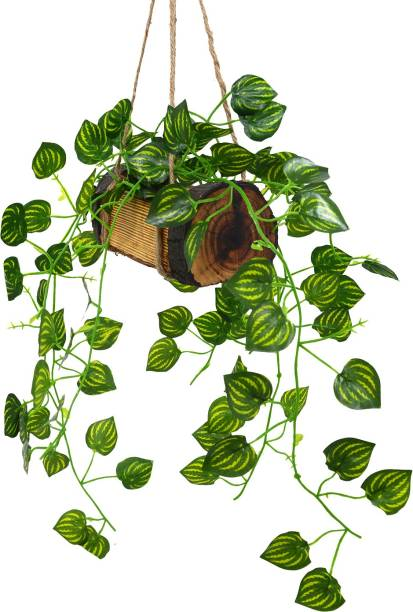 Flipkart Perfect Homes Artificial Falling Leaves Hanging in Wood Buckle Pot Wild Artificial Plant  with Pot