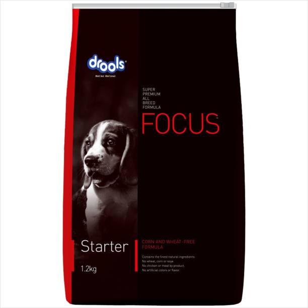drools Focus Starter Super Premium Chicken 1.2 kg Dry Adult Dog Food