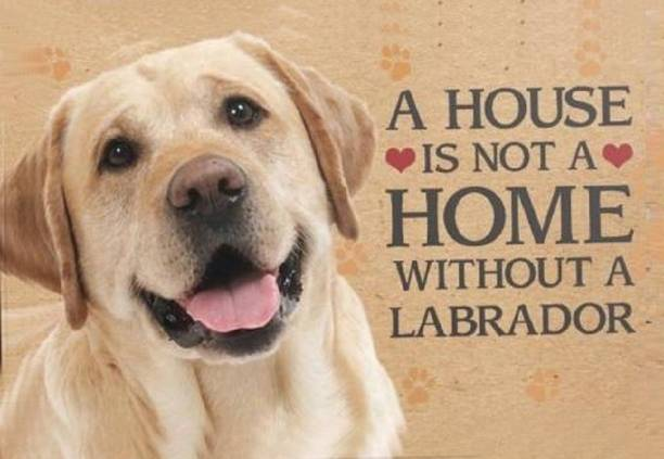 RJ14 (Online) Wooden A House is not a home without a Labrador Dog Plaque Name Plate Name Plate