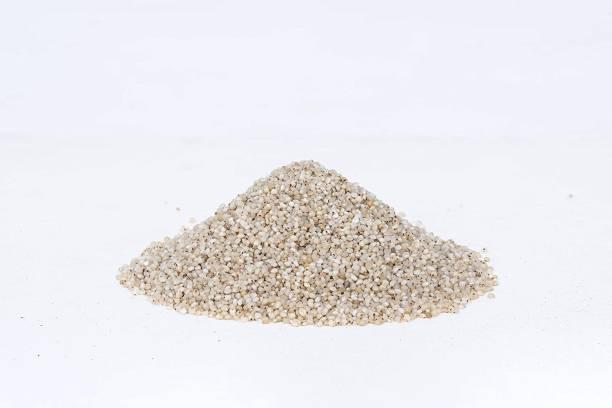 EARTHROOT Natural Unpolished Little Millet / Sama / Samai / Kutki (400 g)