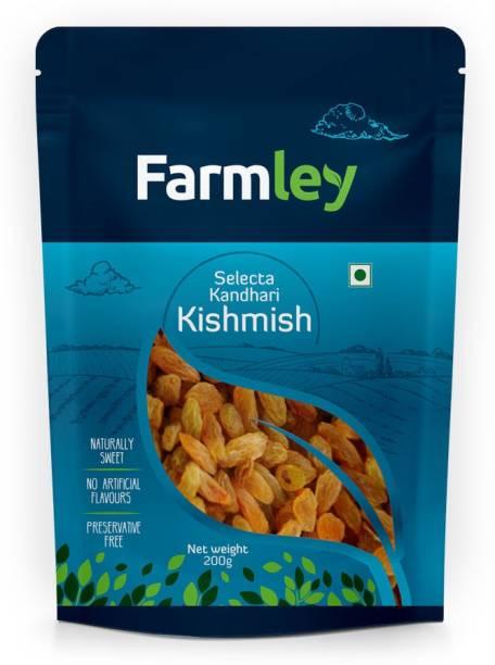 Farmley Selecta Kandhari Kishmish Regular Raisins