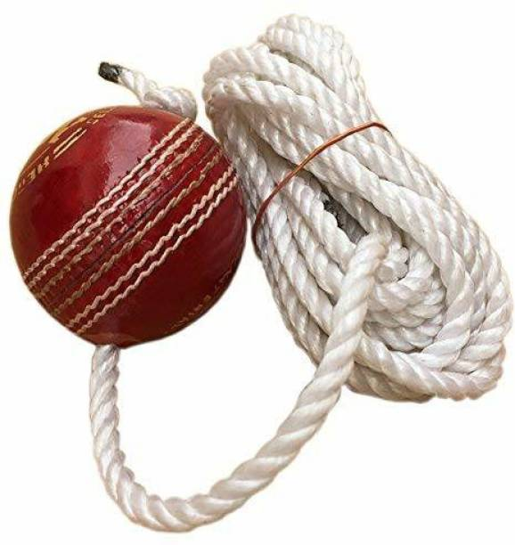 RIO PORT Leather Cricket Shot Practice Hanging Ball, Multi-Color Baseball