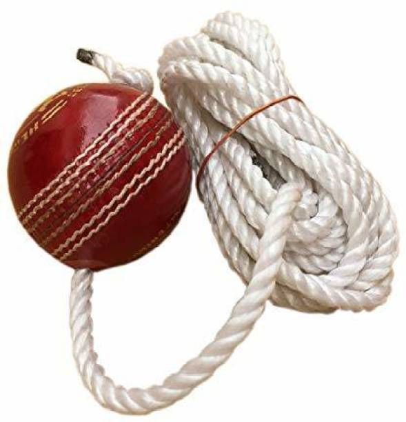 RIO PORT Leather Cricket Shot Practice Hanging Ball, String White Color Baseball
