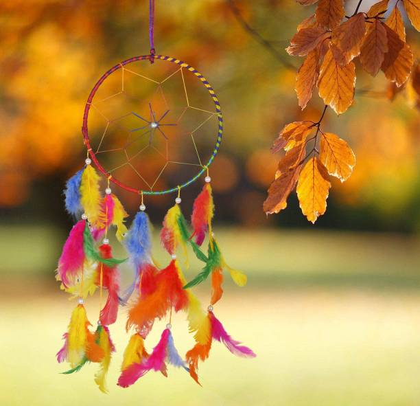 Ryme 6 Inches Multi Color Dream Catcher Wall Hanging For Home / Office Wool Dream Catcher