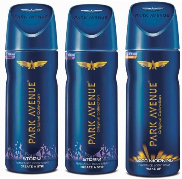 PARK AVENUE 2 Storm and 1 Good Morning Deodorant Combo for Men (Pack of 3) Deodorant Spray  -  For Men