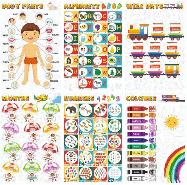 Alphabets, Numbers, Weekdays, Colours, Months, Body Parts Educational Posters/Charts for Preschool Kids, Learning Toy for Toddler Paper Print