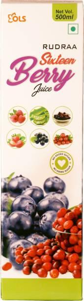 Rudraa SIXTEEN TYPE OF BERRIES Balanced Fruit Juice Acai Fruit And Berries 500ml For Immunity Boost ANTI-OXIDANT