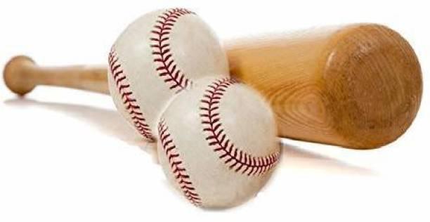 RIO PORT Poplar Willow Baseball Bat with 2 Base Balls (32 inches, 0.900-0.990 kg) Baseball
