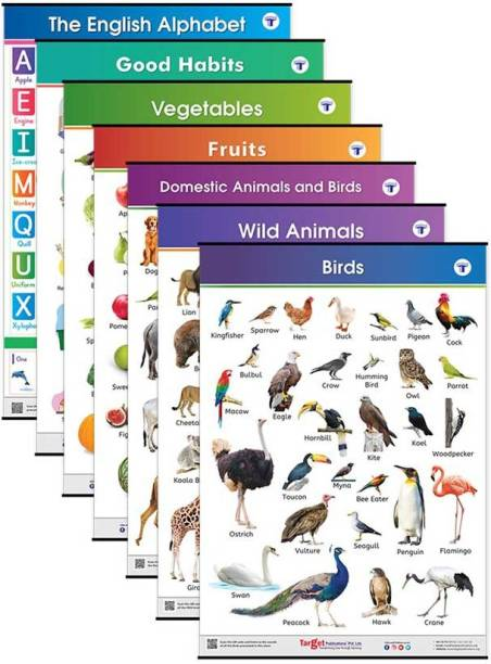 Target Publications Jumbo All in One Educational Charts for Kids | Learn about English Alphabets, Fruits, Vegetables, Good Habits, Domestic, Wild Animals & Birds with Colourful Pictures for Children | 39.25 x 27.25 Inch