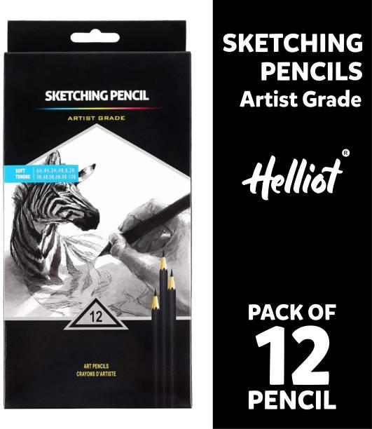 Helliot Graphite Drawing Pencils 10B, 8B, 6B, 5B, 4B, 3B, 2B, B, HB, 2H, 4H, 6H Graphite Pencils for Beginners & Pro Artist Pencil
