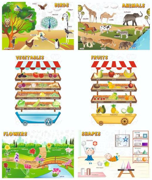 Birds , Animals , Vegetables , Fruits , Flowers , Shapes Educational posters / charts for Preschool kids , Learning Toy For Toddler- Set of 6 Paper Print