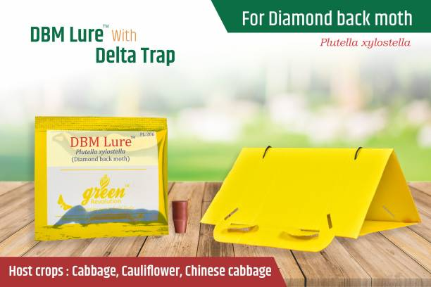 Green Revolution DBM Pheromone Lure with Delta Pheromone Trap Pack of 5 for Diamondback moth (Plutella xylostella)