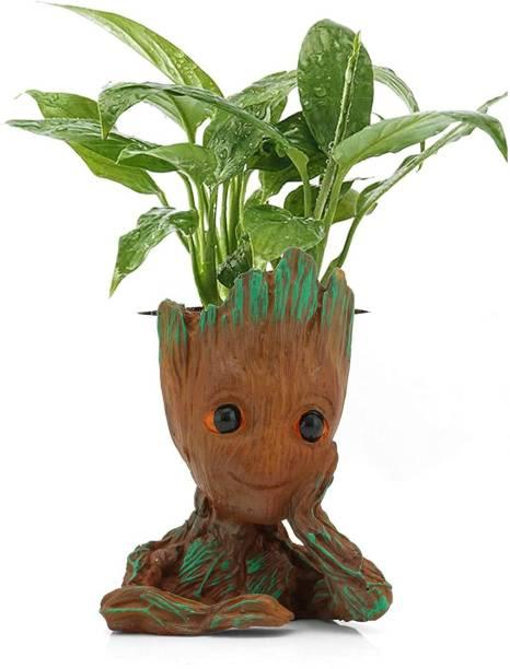 BECKON VENTURE Mspgrootplanter002 Vase Filler