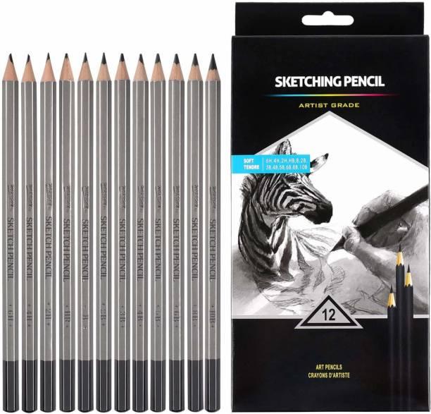 Chrome Graphite Drawing Pencils 10B, 8B, 6B, 5B, 4B, 3B, 2B, B, HB, 2H, 4H, 6H Graphite Pencils for Beginners & Pro Artist Pencil