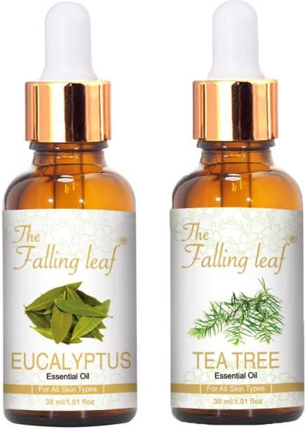 The Falling Leaf Eucalyptus & Tea Tree Essential Oil For All Skin Types-30 ml