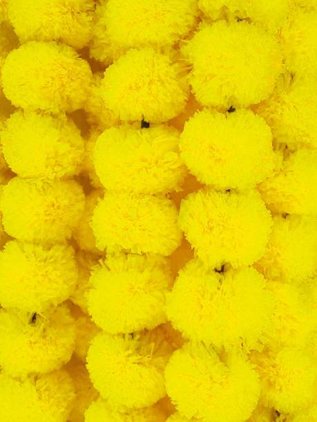 La Esthetic Artificial Marigold Fluffy & Attractive Flowers Garland | Wall Hanging | Home Decor | Office | Special Occasions Decor Yellow (5) Yellow Marigold Artificial Flower