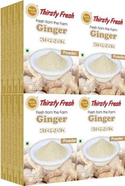 Thirsty Fresh Ginger Powder - (Wholesale Pack of 100gx16)